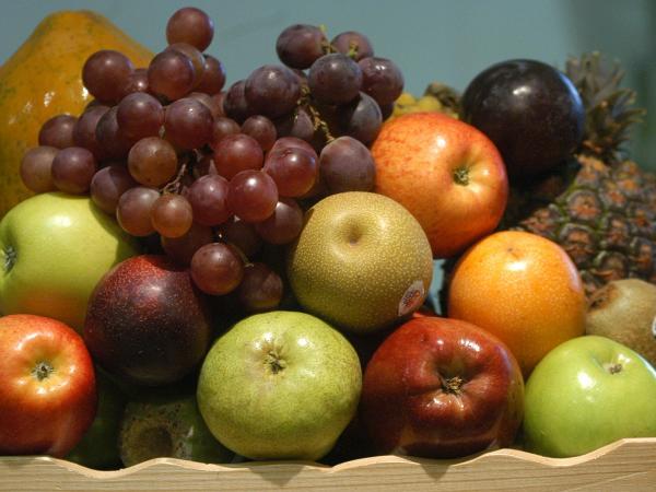 Formulan cargos a 'cartel' de frutas en alimentación escolar