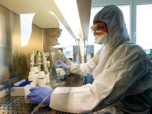 Los nuevos casos de coronavirus reportados este domingo
