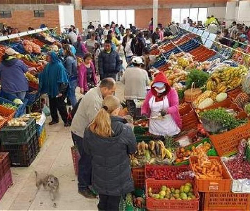 El gasto de los hogares colombianos sigue en aumento - Noticias de Colombia