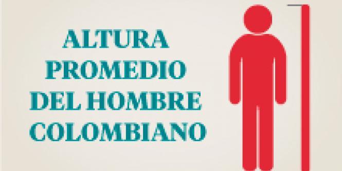 cual+es+la+estatura+normal+del+hombre