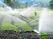 Competitividad agrícola, restringida por manejo del agua